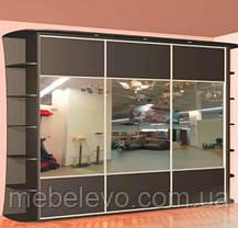 Шкаф-купе 3 двери Стандарт 230х60 h-210, ТМ Феникс, фото 3
