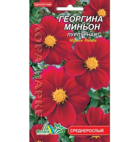 Георгина миньон пурпурная цветы однолетние низкорослые, семена 0.15 г