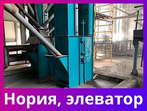 Нория зерновая ленточная 5-250 т/ч