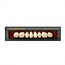 Боковые зубы Gnathostar (Гнатхостар), IvoclarVivadent(Ивоклар),Лихтенштейн