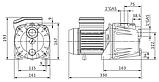 Самовсасывающий центробежный насос Initial JET 3-4 (аналог JSWm 1BX Pedrollo), фото 2