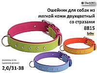 Ошейник для собак из мягкой кожи двухцветный со стразами 20 мм 310-380 мм