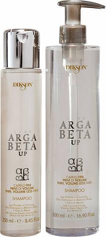Dikson Argabeta Up Shampoo Capelli Di Volume - Відновлюючий шампунь для тонкого волосся, позбавленого об'єму волосся, 250 ml, фото 2