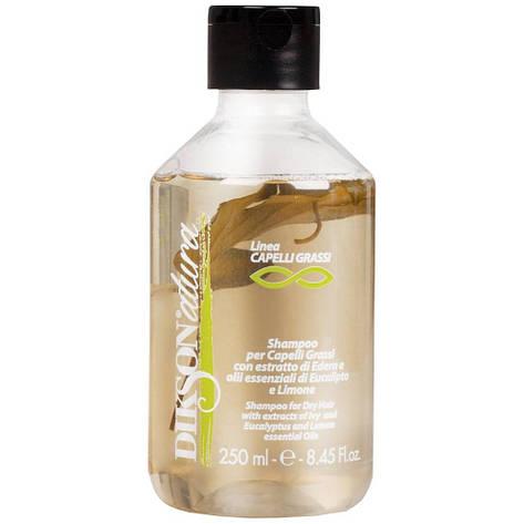 Dikson Natura Shampoo For Oil Hair - Шампунь для жирной кожи головы и волос с лимоном, 250 ml, фото 2