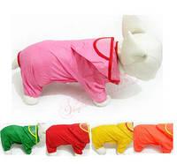 Легкий простой дождевик для собак. Одежда для собак.
