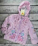 Куртка. Ветровка для девочек Размер 86, 1,5 года, розовый Полиэстер V99-15(86)р Baby Line Украина