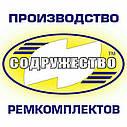 Ремкомплект гидроцилиндра подъёма кузова (двухцилиндровый) автомобиль КрАЗ-6510, 256, фото 2