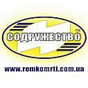 Ремкомплект гидроцилиндра подъёма кузова (двухцилиндровый) автомобиль КрАЗ-6510, 256, фото 3
