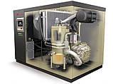 Гвинтовий маслозаповнений компресор із змінною швидкістю модель R132-160n, фото 2