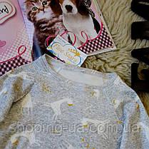 Кофточка реглан для дівчинки жирафи Five Stars KD0301-110p, фото 2