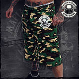Спортивные шорты, фото 3