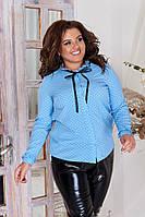 Рубашка стильная  в горох в расцветках 39251, фото 1