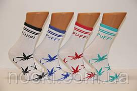 Жіночі шкарпетки високі стрейчеві з бавовни комп'ютерні STYLE LUXE КЛ kjv kjsv 140 білий