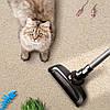 Як легко і швидко очистити килим від шерсті: перевірені методи і доступні засоби