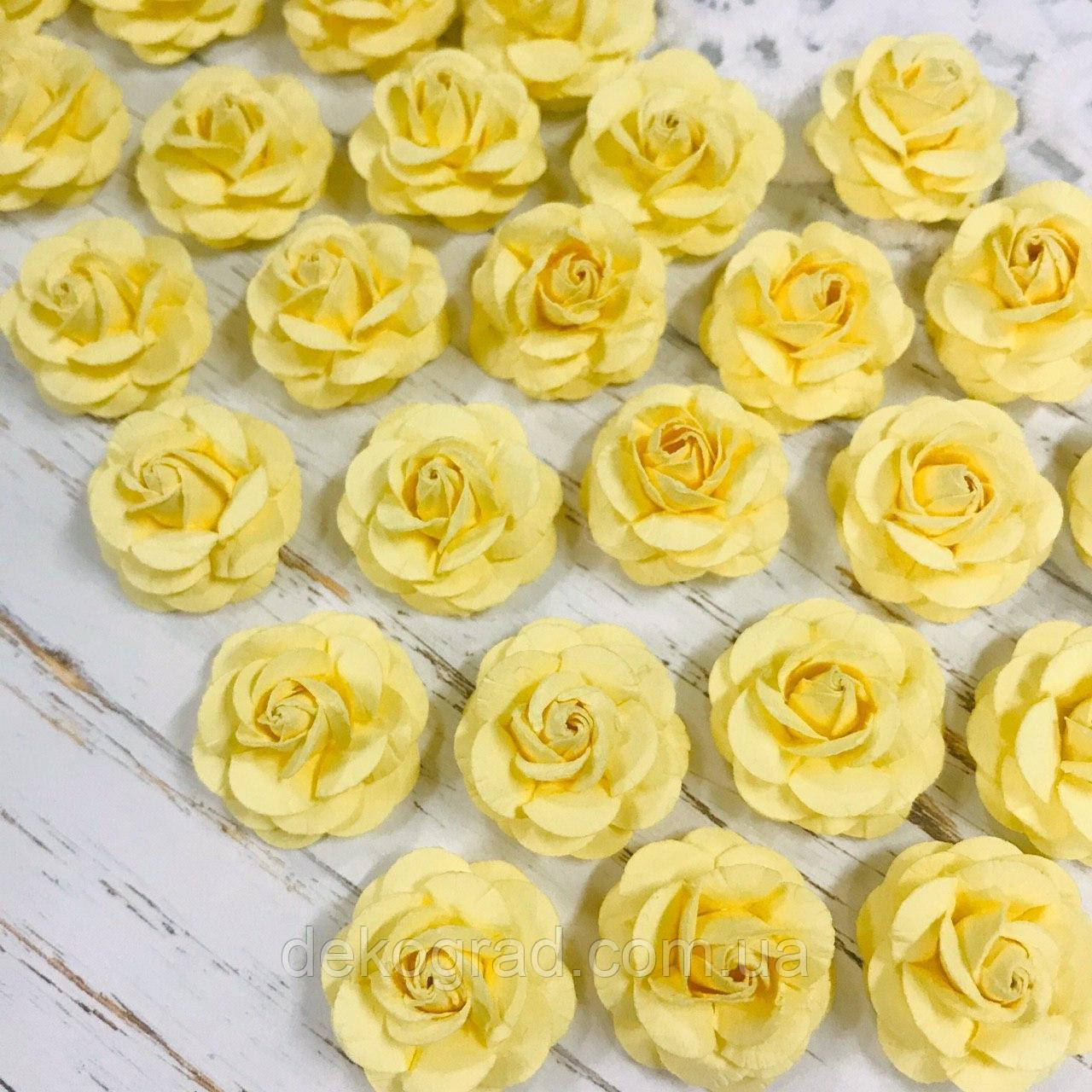 Роза нежно-жёлтая ДГ