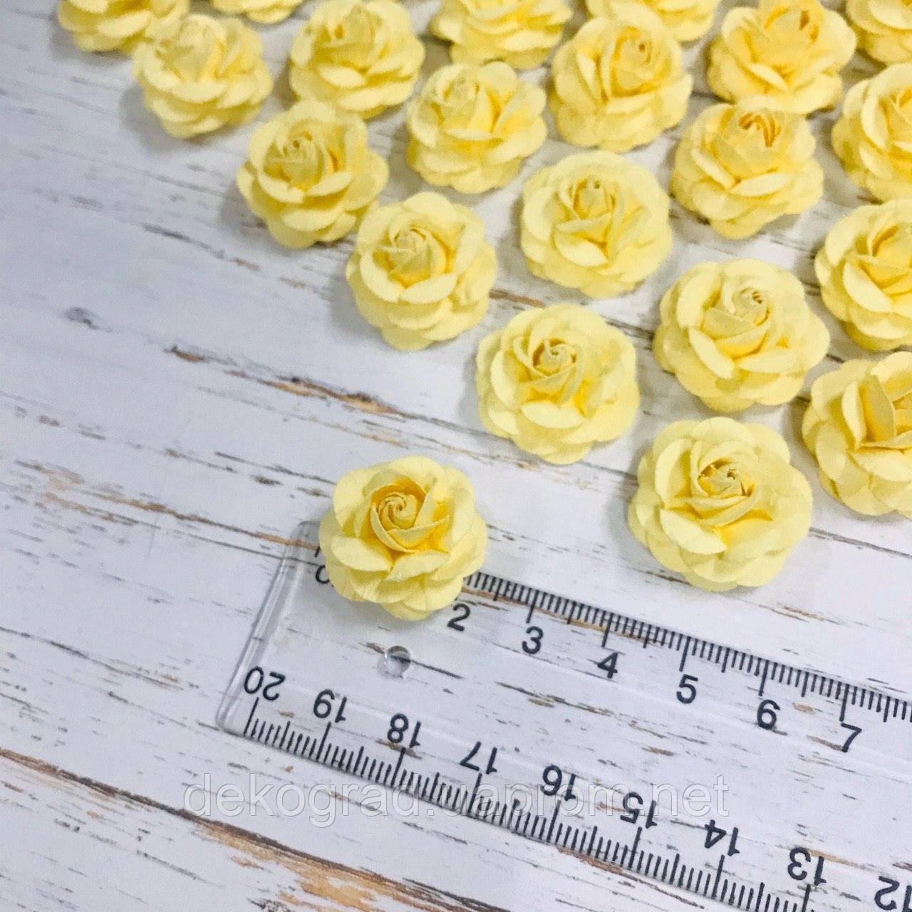 Роза нежно-жёлтая ДГ 20-25 мм