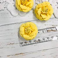 Роза жёлтая ДГ 40-45 мм, фото 1