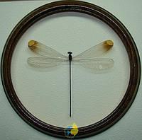 Сувенир - Стрекоза в рамке Mecistogaster lucretia. Оригинальный и неповторимый подарок!