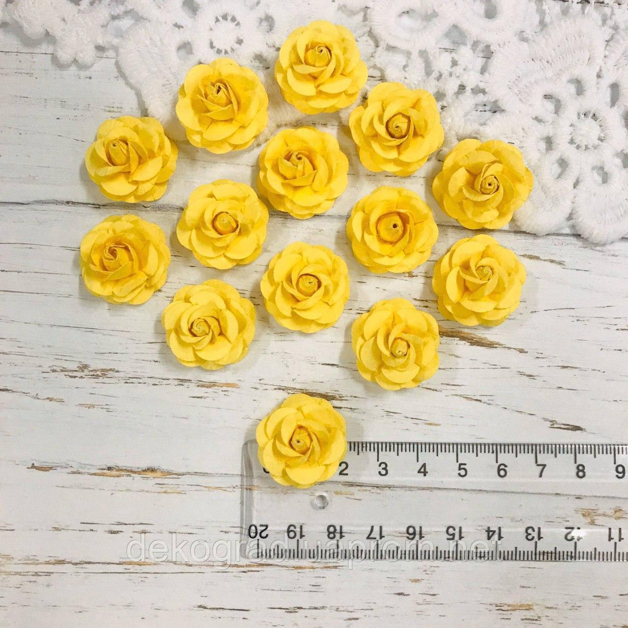 Роза жёлтая ДГ 20-25 мм