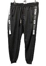 Спортивные штаны мужские Jager Fable на манжетах трикотажные с полулампасами
