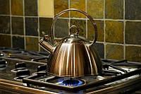 Какие бывают чайники для газовых и электрических плит