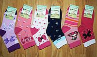 Носочки хлопковые для девочек Armando оптом 19-\22, 31\34р, фото 1