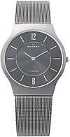 Мужские часы SKAGEN 233LTTM