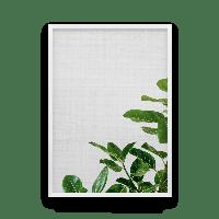 Постер на стену BOTANICA с растительной тематикой