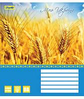 Тетрадь ученическая А5/24 линия 1 Вересня РОДНАЯ СТРАНА-15, фото 1