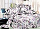 Комплект постельный 2-х спальный. Ранфорс, фото 2