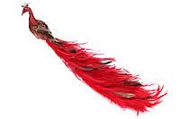 Декоративная птица с клипсой Павлин, цвет - красный, 42см BonaDi 743-353