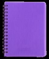 Тетрадь для записей RAIN, А6, 80 л., клетка, пластиковая обложка,  Артикул: BM.24652152