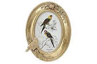 Рамка для фото овальная 21см Птица, цвет - состаренное золото BonaDi 450-138