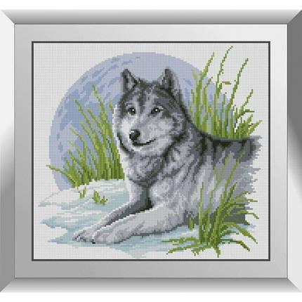 31247 Волчонок Набор алмазной живописи, фото 2