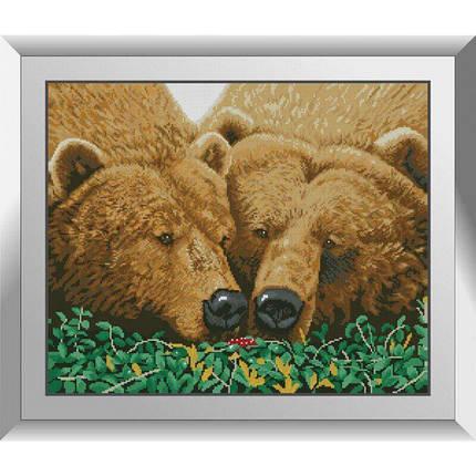 31256 Пара медведей Набор алмазной живописи, фото 2