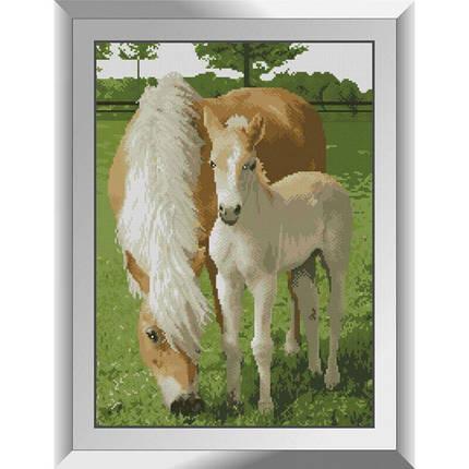 31263 Кінь з лошам Набір алмазної живопису, фото 2