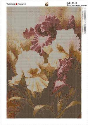 КДИ-0943 Набор алмазной вышивки Благородные ирисы, фото 2