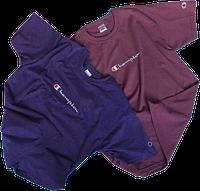 Мужские футболки Champion (ориг.бирка и качество) фиолетовая и пурпурная