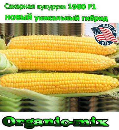 Новый уникальный гибрид сахарной кукурузы 1980 F1 (США), фермерская упаковка (25 000 семян), ТМ Spark Seeds