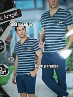 Мужской комплект для дома 3-ка футболка, шорты и штаны в наличии размер XL/XXL