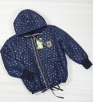 Куртка  демисезонная  для  девочки  134-152 темно-синий, фото 2