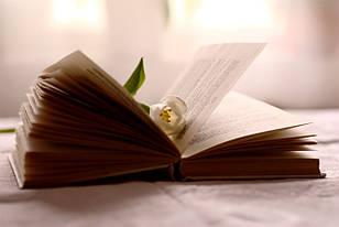 Книги для девушек к 8 марта — лучший подарок в Международный женский день