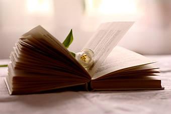 Книги для дівчат до 8 березня — найкращий подарунок у Міжнародний жіночий день