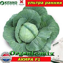 Капуста ультра ранняя АКИРА F1 (KITANO SEEDS, Нидерланды), проф.пакет 2500 семян