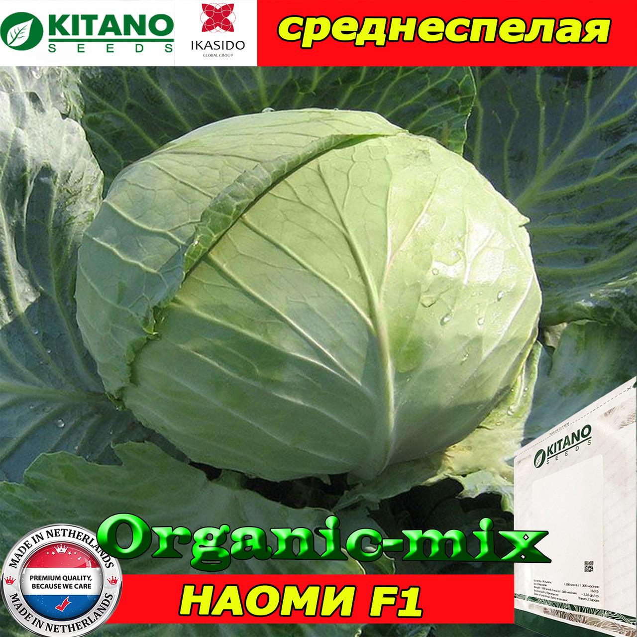 Капуста среднеспелая НАОМИ F1 (KITANO SEEDS, Нидерланды), проф.пакет 1000 семян
