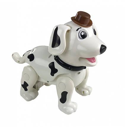 Собака 888-1F (Белый), фото 2