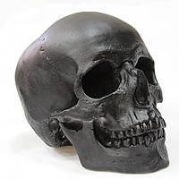 Череп черного цвета, гипсовый, декоративный, в натуральную величину