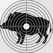 Мишень для луков и арбалетов малая (20x20 см) - 50 шт
