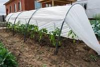 Парник Agreen 12м агроволокна плотностью 40г/м, фото 1