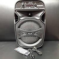 Радио портативная колонка WS Jar E-6333B FM, TF, USB